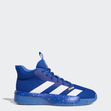 Chaussure Pro Next 2019 Bleu Hommes Basketball