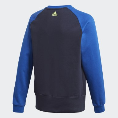 Boys Lifestyle Blue Logo Crew Sweatshirt