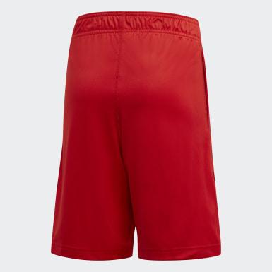 Pantalón corto D.O.N. Issue #2 Rojo Niño Baloncesto