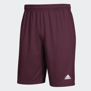 Clima Tech Shorts