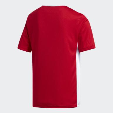 Camiseta Entrada Rojo Niño Fútbol