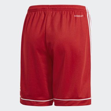 Pantalón corto Squadra 17 Rojo Niño Training