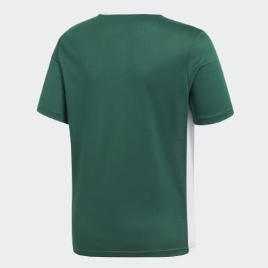 Jersey Entrada Verde Niño Fútbol