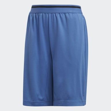 Shorts Climacool Training