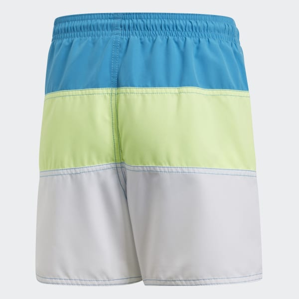 Colorblock Swim Shorts
