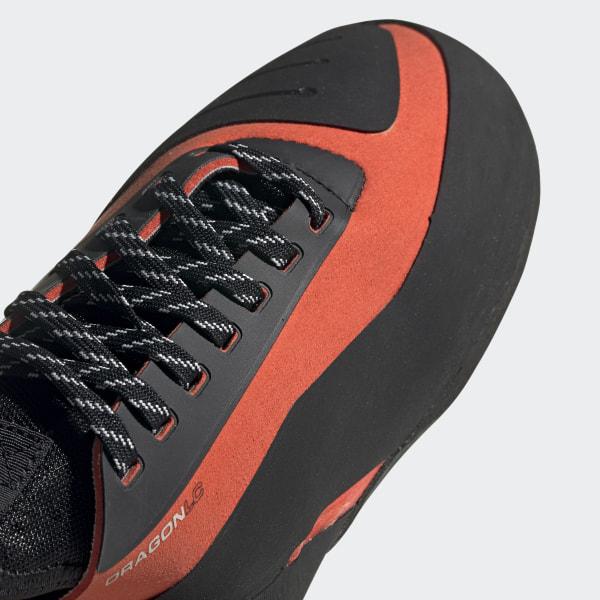 Five Ten Dragon Shoes