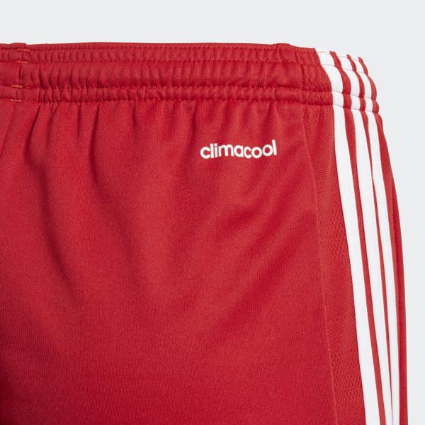 Sports & Outdoors adidas Performance Mens Tastigo 15 Shorts