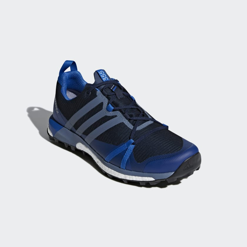 adidas Performance TERREX AGRAVIC GTX - Trail running shoes - blue MijsGRrvpr