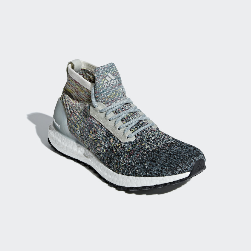 Ultraboost All Terrain LTD Skor